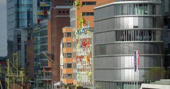 Bild der KW24: Flossis im Medienhafen
