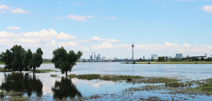 Bild der KW26: Breiter Rhein