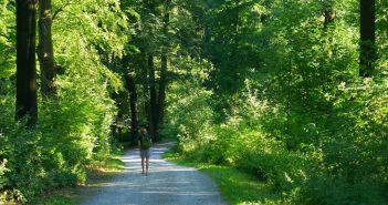 Der Wandershofer Weg im Grafenberger Wald